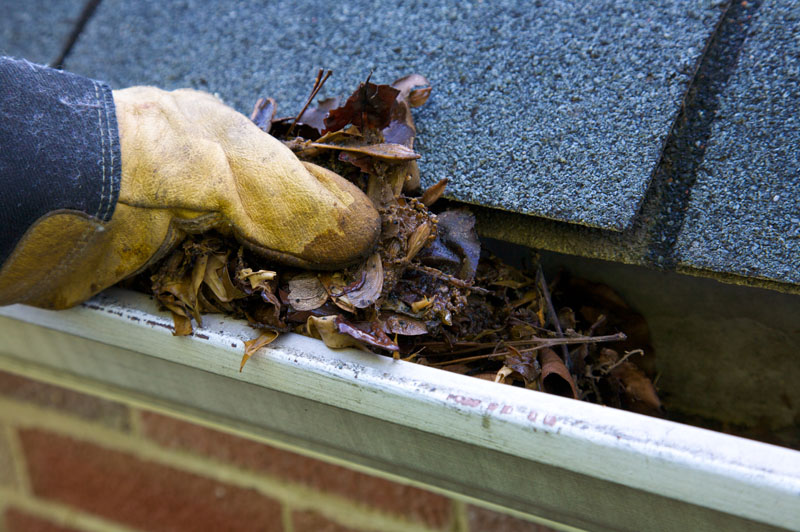 Premier Gutter Cleaning Services